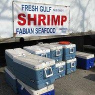 shrimp062110.jpg