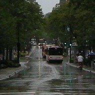 statestreet-taxis080912.jpg
