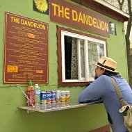 dandelion040913.jpg