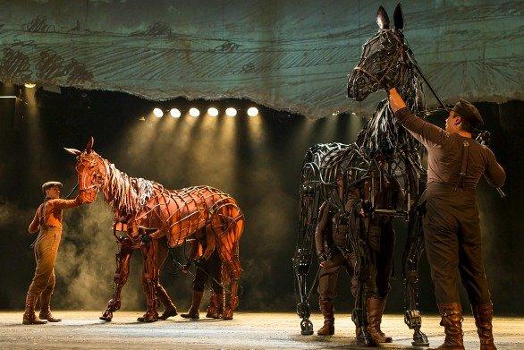 warhorse061114b.jpg