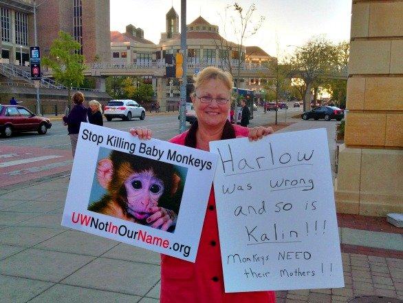 uw-monkeys-maternaldeprivation101314a.jpg