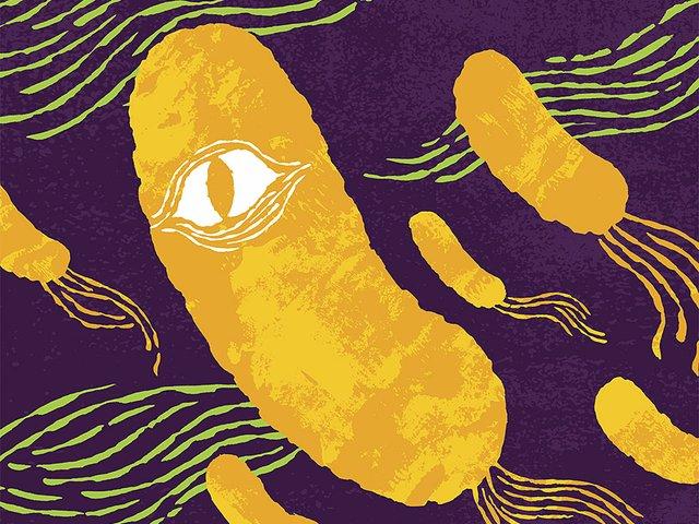 Cover-Antibiotic-Resistant-Bacteria-crJamesHeimer04022015.jpg