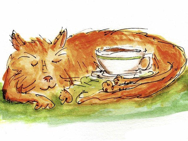 Coffee-BradburysFlatWhite-crNoahPhillips-04162015.jpg