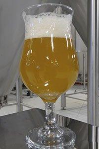 Beer-CommonThread-crRobinShepard-04302015.jpg