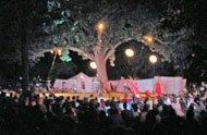 Magic Under Orton Park Oak >> Cycropia Returns To The Orton Park Festival Isthmus Madison