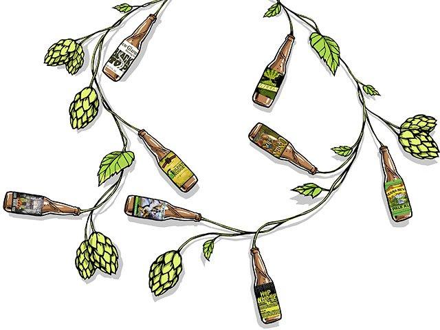 HopsPrimer_crTommyWashbush-Drinks2015.jpg