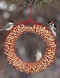 GiftsHome-BirdSeedWreath198px.jpg