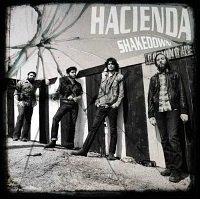 music-vinylcave-hacienda-20120708.jpg