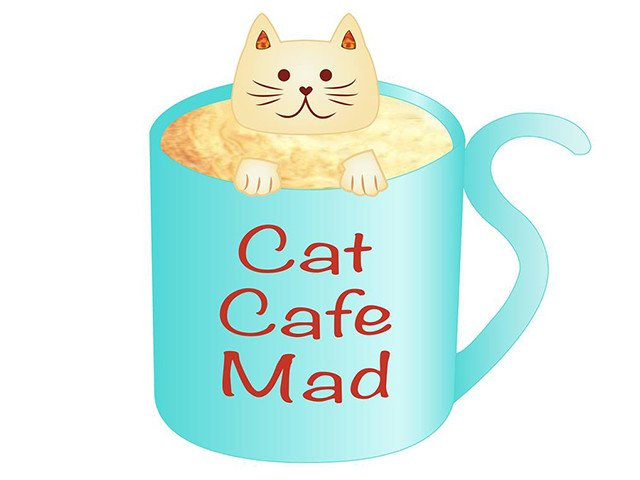 News-Cat-Cafe-3-17-2016.jpg