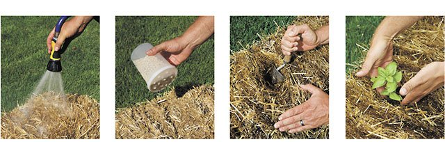 abode-Straw-Bale-planting-crTracyWalsh-05052016.jpg