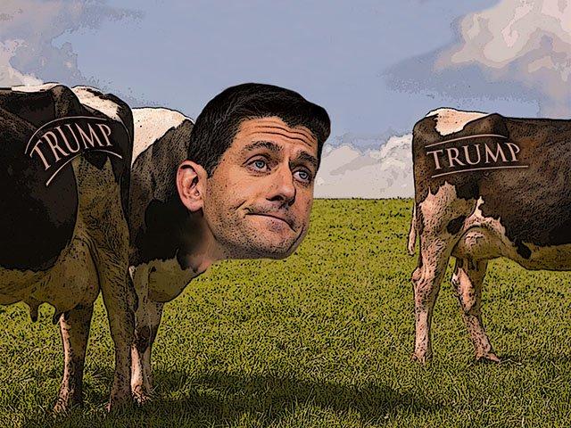 Citizen-Dave-Ryan-endorsement-crDMM-06092016.jpg
