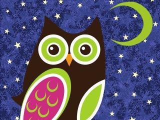 Food-Green-Owl-Cafe-06092016.jpg