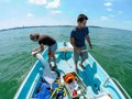 What-To-Do-Limnology-06232016.jpg