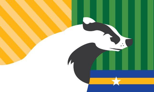 Flags-CaseyArendt-07012016.jpg