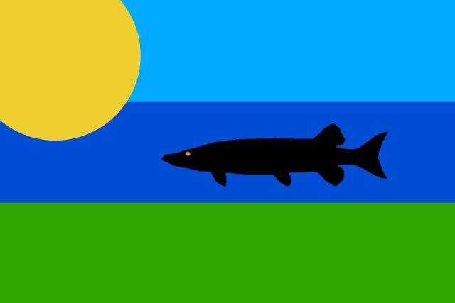 Flags-DanJohnson2-07012016.jpg