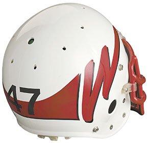 LogoStory-Helmet-Never-Was-290w-08312010.jpg
