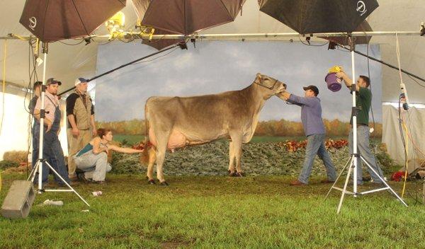 Snapshot-Dairy-Expo-crLindaFalkenstein-10202016.jpg