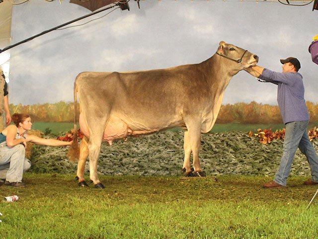Snapshot-Dairy-Expo-teaser-crLindaFalkenstein-10202016.jpg