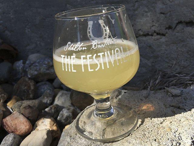 Beer-Festival-Column-Art-crKyleNabilcy-11012016.jpg