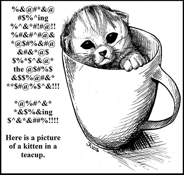 OnTheSquare-Kitten-11102016.jpg