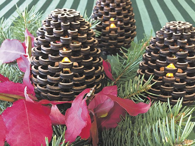 Giving-2016-Maker-Pinecones-crCarolynFath.jpg