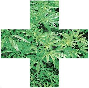 WIR-Med-Marijuana-290w-02092017.jpg