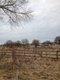 MadisonMirror-0306170crJustinSprecher.jpg