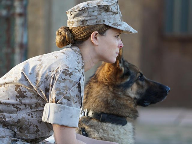 Screens-Megan-leavey-06152017.jpg