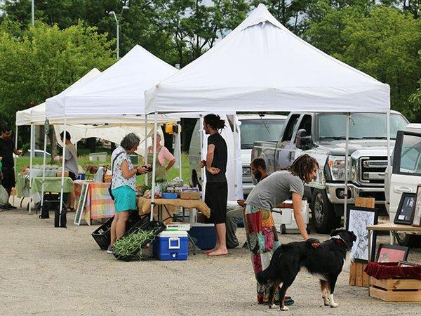 Food-Elver-Park-Farmers-Market-crLizMerfeld-07062017 (2).jpg