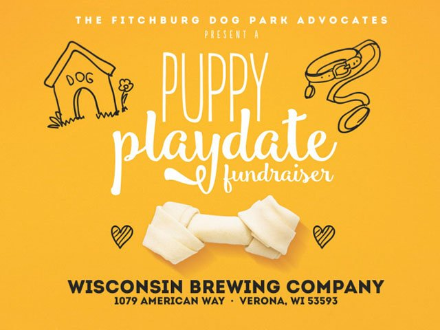 What-To-Do-Puppy-Playdate-08102017.jpg