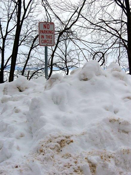 snow021308l.jpg