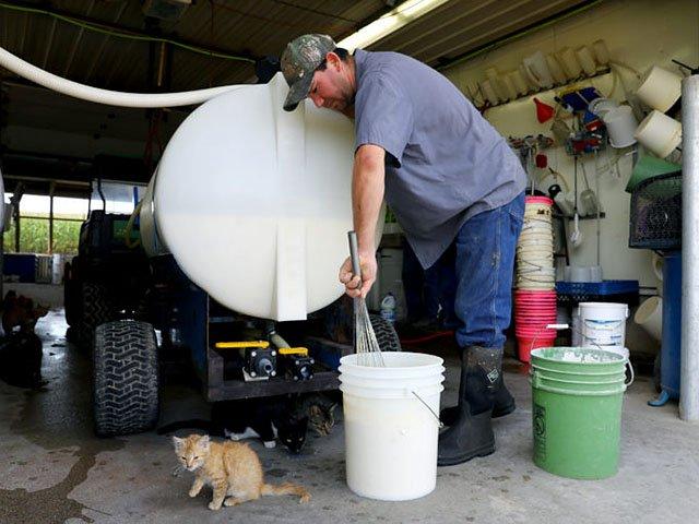 news-Dairy-RiveraSergio-crCoburnDukehart-10092017.jpg