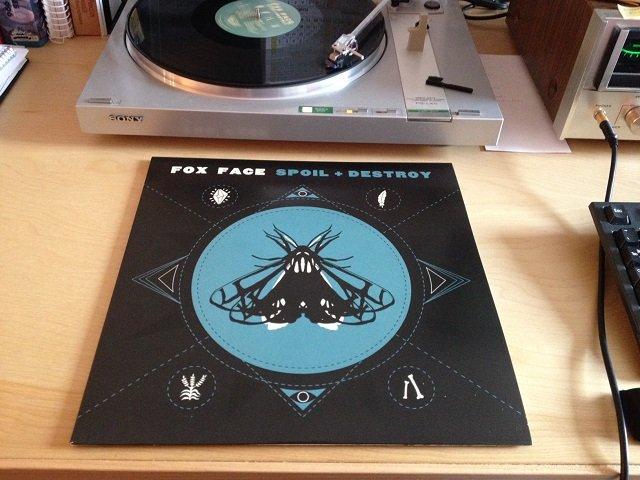 Vinyl-Cave-Fox-Face.jpg