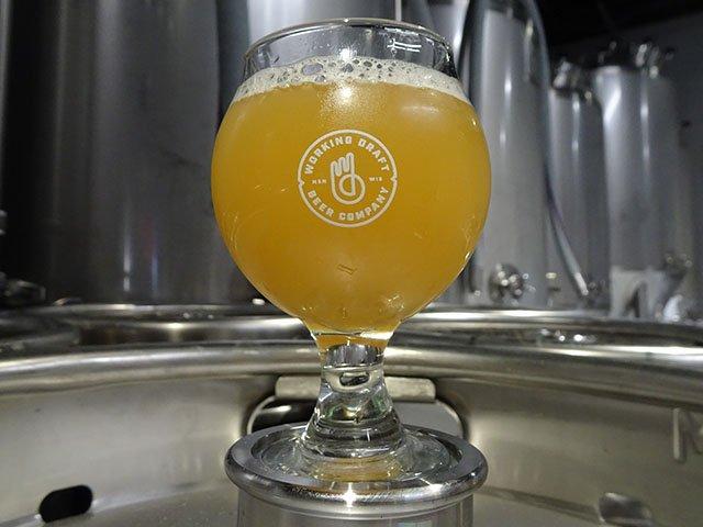 Beer-Working-Draft-Pulp-Culture-crRobinShepard-03072018.jpg