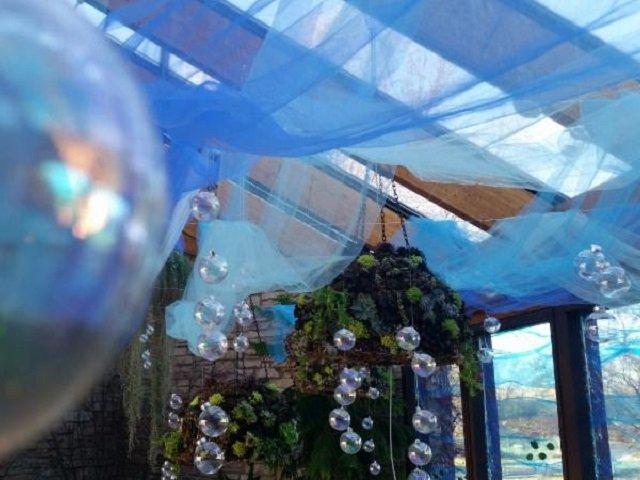 calendar-Olbrich-spring-flower-show-2018.jpg