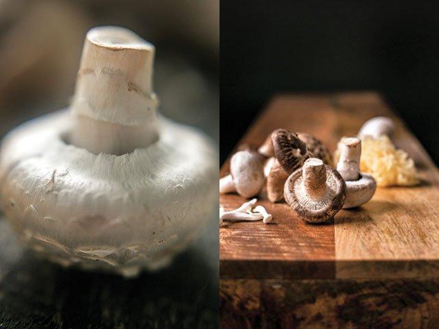 Mushrooms-crLauraZastrow-Dining2018.jpg