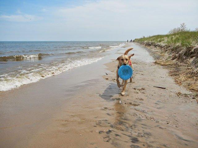 ST-Road-Trip-Point-Beach-05242018.jpg