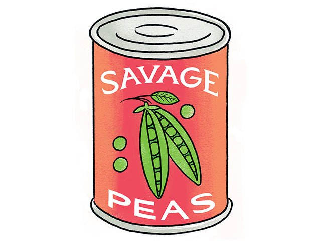 Savage-Love-crJoeNewton-05242018.jpg