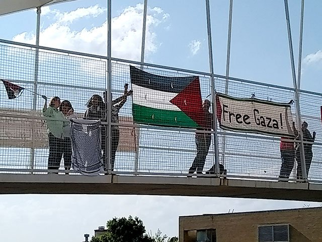 Snapshot-Free-Gaza-Protest-crTselaBarr-05242018.jpg