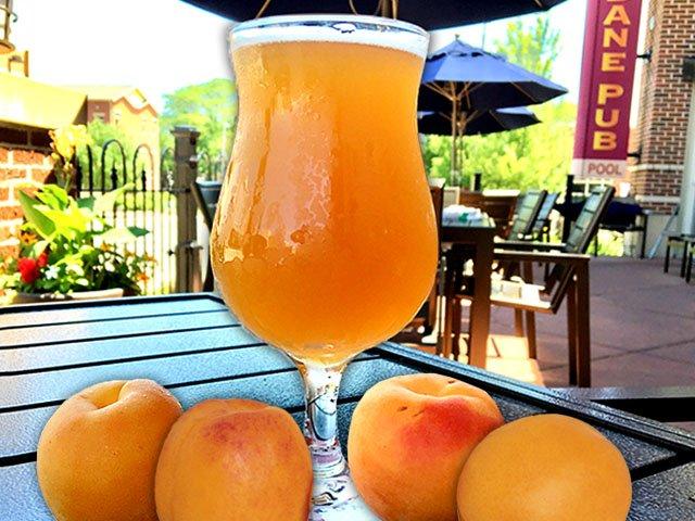 Beer-Great-Dane-Brett-Apricot-crRobinShepard-07052018.jpg
