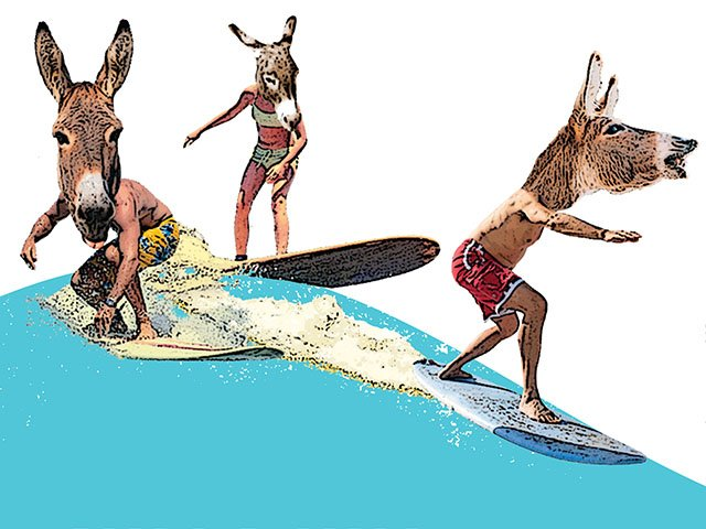 Cover-surf-up-art2_crDMM08162018.jpg