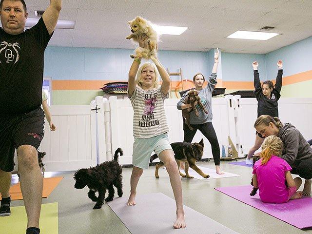 Snapshot-Puppy-Yoga-crBethSkogen-11222018.jpg