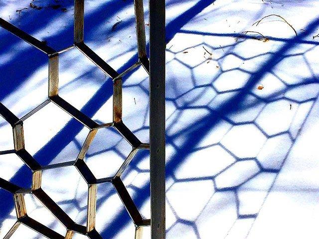 Arts-KrskoPeter-Olbrich-LOOK-Tropical-Tessellations-crPeterKrško02142019.jpg