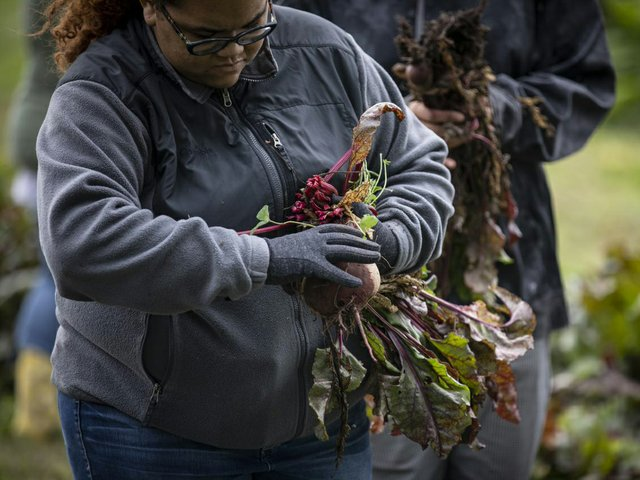 Madison College Embraces Farm To Table Movement Isthmus