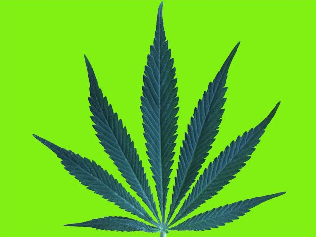 Cover-TEASER-Marijuana-Leaf-crCarolynFathAshby-07042019 outlined.jpg