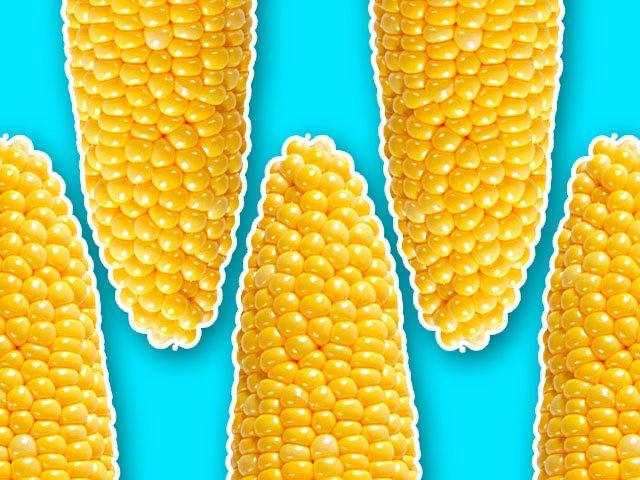 EatsEvents-SunPrairie-Corn-Fest-08152019.jpg