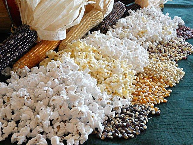 Food-Tietz-Family-Farms-Popcorn-crTietzFamilyFarms-08292019.jpg