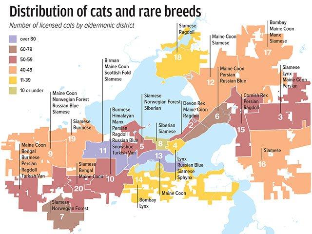 Cat-Map-11282019