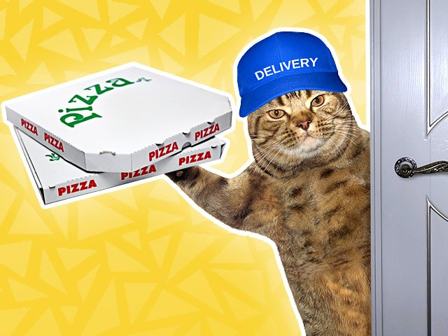 Food-Delivery-Drop-Off-Cat-03192020.jpg