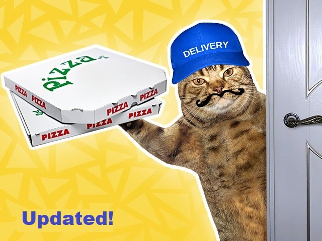 Mustache delivery cat